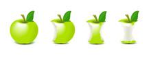 Bitten Apple Vector