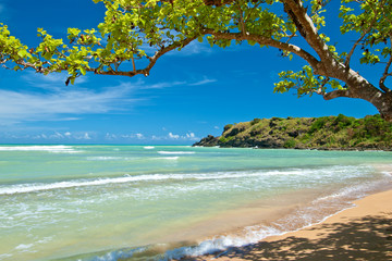 Fototapeta Morze hidden beach, puerto rico