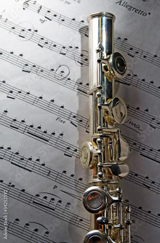 Obraz na plátně  flauto traverso