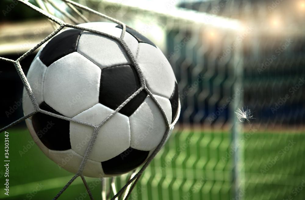 Fototapeta goal