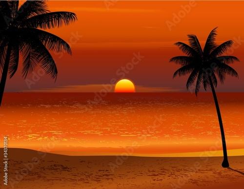 Fototapety, obrazy: Tropical beach sunset