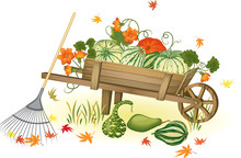 Handcart With Heap Of Pumpkins