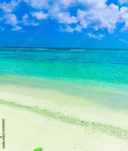 Sand Sea Summer