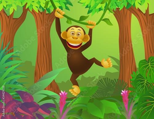 szympans-w-lesie