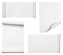 White Crumpled Curled Scroll N...