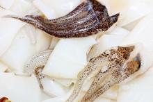 Red Squids Closeup