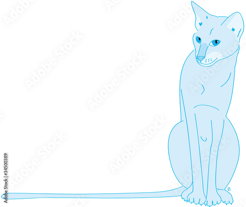 chatte orientale bleue assise Wallpaper Mural