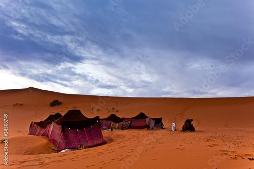 Bedouin tents in the Sahara Desert Canvas Print