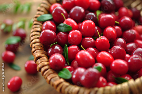 Fotografia  Cranberries