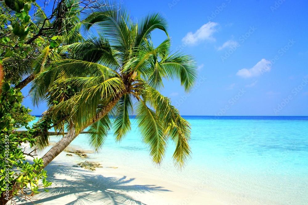 Fototapeta Maldives Adaaran Club Island