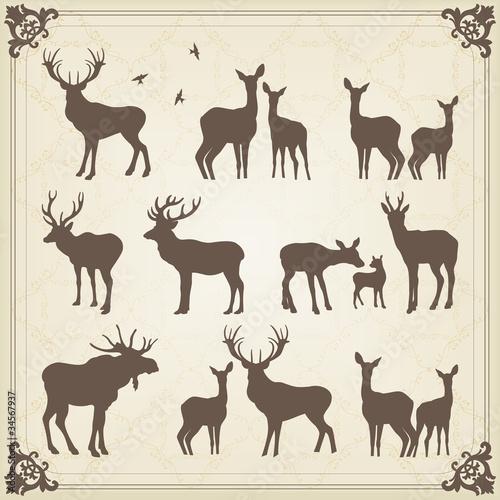 Vintage vector deer and moose illustration Wallpaper Mural
