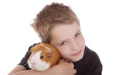 Enfant De 8 Ans Cajolant Son Cobaye