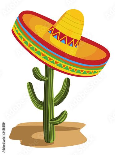 Fotografie, Obraz  Sombrero on Cactus
