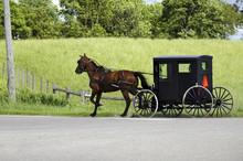 Amish (mennonite) People Ridin...