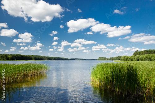 Summer view at the lake in the park - 34647392
