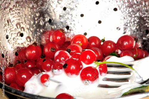 Foto op Canvas In het ijs curants, detail, eat, fresh, fruits, food, health, natural,