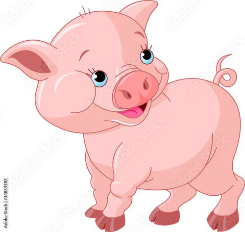 Spoed Foto op Canvas Boerderij Little Baby Pig