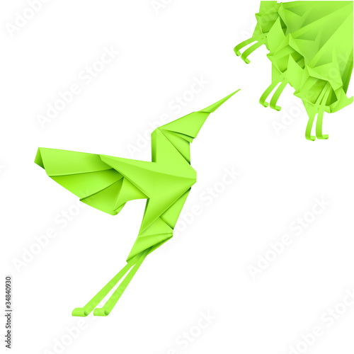 Photo Stands Geometric animals Paper Colibri
