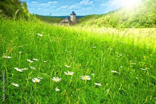 Photo  green meadow on castle Karlstein background