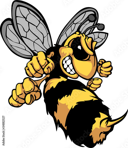 Photo  Bee Hornet Cartoon Image