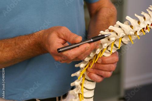 Fotografía  Arzt zeigt auf einen Wirbel