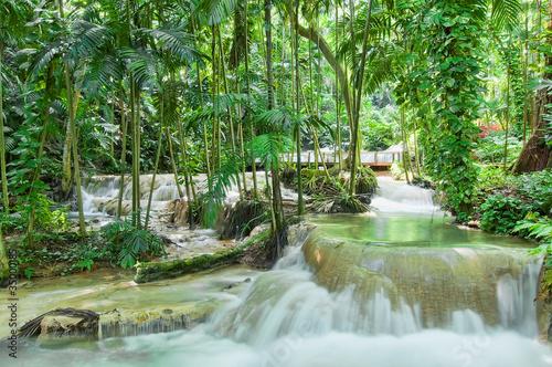 Fotografie, Obraz  Enchanted gardens in Jamaica