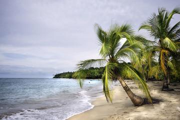 Fototapeta Morze Costa Rica - Caribe