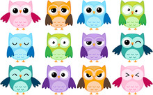 Set Of 12 Cartoon Owls With Various Emotions