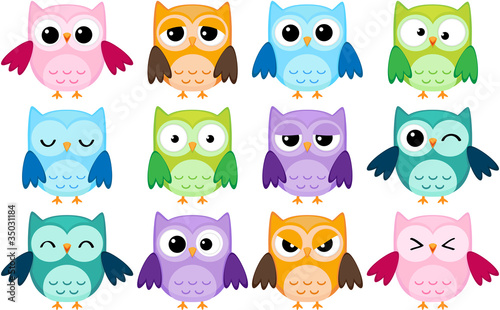 Fotografie, Obraz  Set of 12 cartoon owls with various emotions