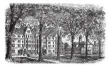 Harvard University, Cambridge, Massachussets Vintage Engraving