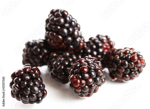 Fresh dewberry Slika na platnu