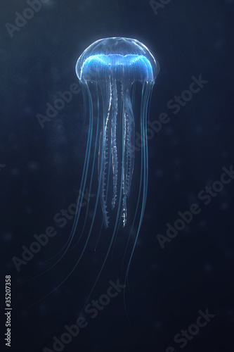 Photo deep sea jellyfish