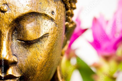 Akustikstoff - Buddha