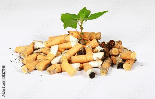 Fotografie, Obraz  arrêter de fumer