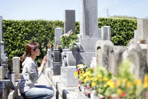 Obraz na plátně 墓参り