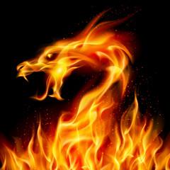 Naklejka Do pokoju młodzieżowego Fire Dragon
