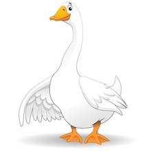 Oca Papero Fumetto-Goose Duck ...