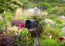 US Mailbox With Flag Raised In Flowers