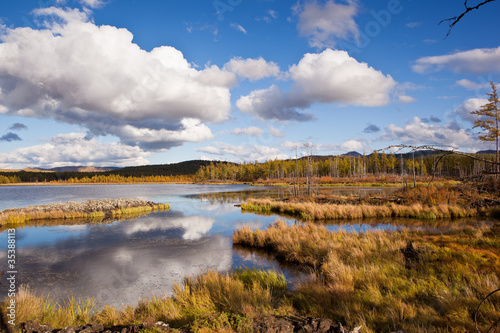 Fotomural Grassland and wetland