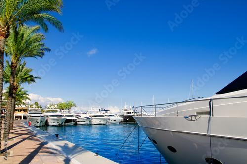 Foto-Leinwand - Calvia Puerto Portals Nous luxury yachts in Majorca