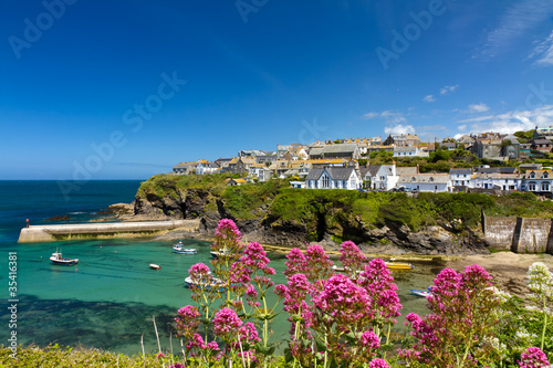 Cove and harbour of Port Isaac, Cornwall, England Poster