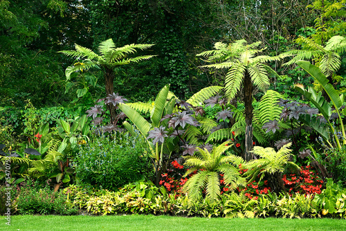 Photo  gardens in park
