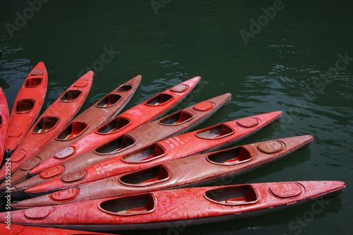 Fotografie, Obraz  kayak rossi