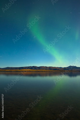 Northern lights and fall colors at calm lake Poster