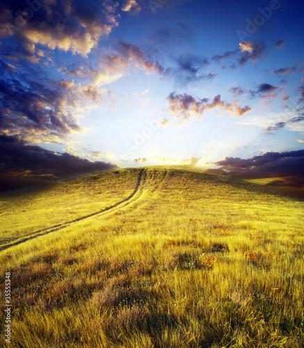 Foto op Plexiglas Blauwe hemel meadow