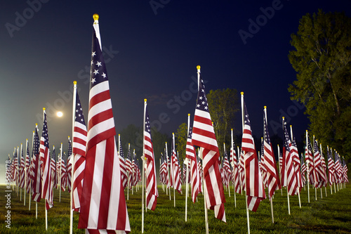 Flags in the Healing Fields for 9/11 Poster