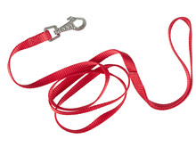 Red Nylon Dog Lead Or Leash Is...