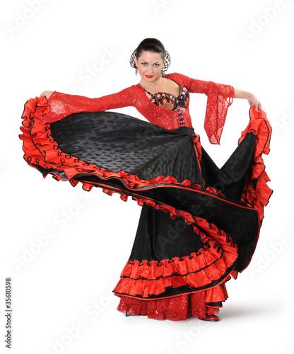 Fotografie, Obraz  Young elegance flamenco dancer in action