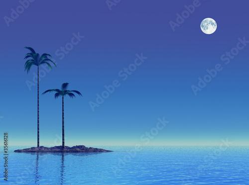 Poster Pleine lune Twilight at tropical sea