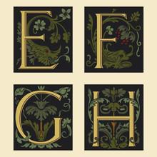 Sixteenth-Century Alphabet E F...
